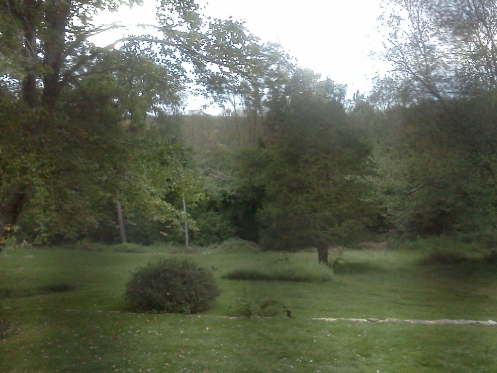 the view from my new studio